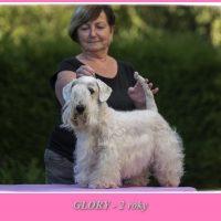 Glory-2-roky