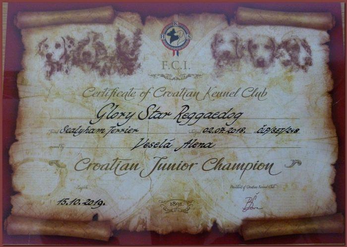 Glory-JChCRO-diploma